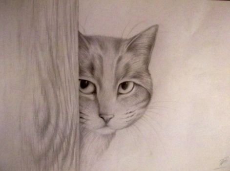 Village cat - VAart by Anastasia1995art