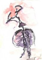 bicycle by pnna