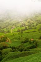 Fog in the valley. by MarioGuti