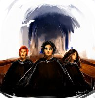 Harry Potter and the Order of the Phoenix by Catherine-PL