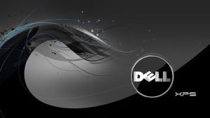 dell wallpaper bw two by coolcat21