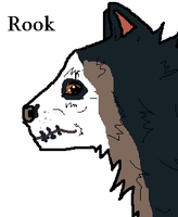 Rook~ CONTEST ENTRY! by brindlecatt