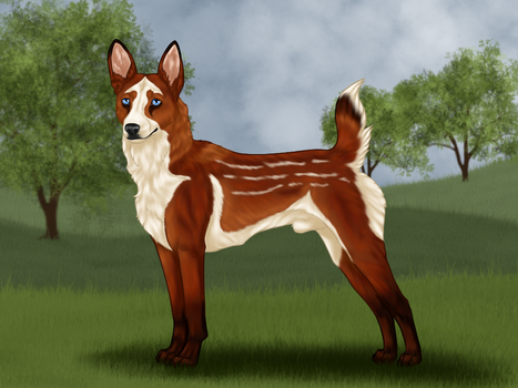 AK SK Forest Prince by Caterang8