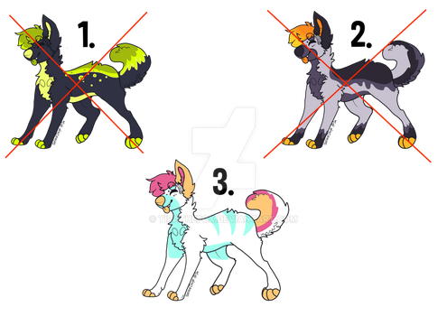 Dog Adopts - 10 points each!!!! 1/3 STILL OPEN!!!! by XxGoldenSketchxX