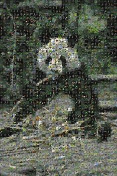 C-Commons Photomosaic Panda by Tux-t-penguin