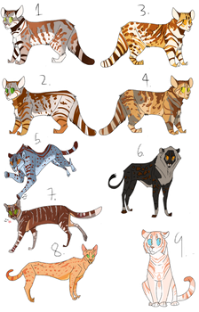 Big Cat Point Adoptables (OPEN 6/9) by Marietsloth
