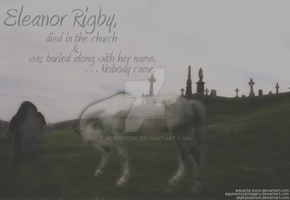 Eleanor Ribgy - Lonely People by HorseFoal