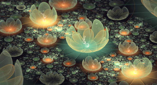 On the lotus pond by Fiery-Fire