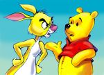 Winnie the Pooh and Rabbit by zdrer456