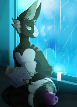 .:Grem2:. Reading by the rain by B1itzkrieger