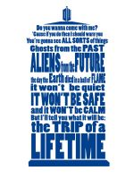 It's Gonna Be Fantastic... Doctor Who t-shirt by Lantis-Erin