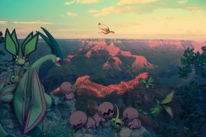 Wild Flygon Families in Grand Canyon