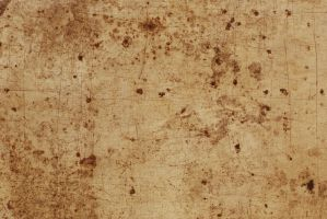 C. Guest Texture Stock by redwolf518stock