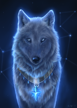 Star Wolf by Starcanis