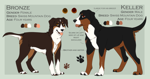 Bronze and Keller refs by kninety