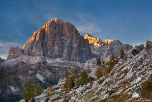 Tofana di Rozes by AndreasResch