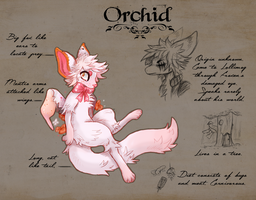 Orchid reference sheet by Miss-Italia