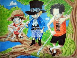 Ace Sabo Luffy by OnePiecerin