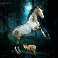 HEE Horse Avatar - Enchanted Fox by art-equine