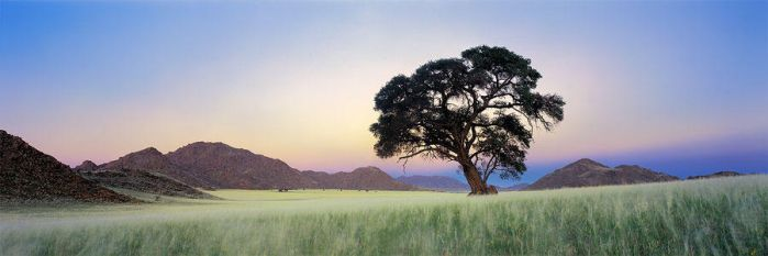 The Namib Rand by hougaard