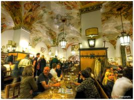 Munich Beer - Hofbrauhaus by superjuju29