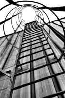 Cage to the Roof by basseca