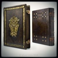 Dungeons and Dragons journal... by alexlibris999