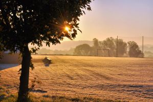 Sunny morning by tomsumartin