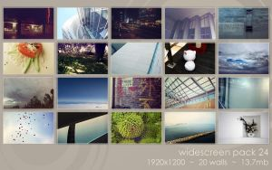 widescreenpack 24 by ether