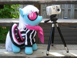 Photo Finish Plush Completed by SewShy