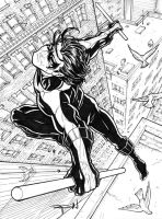 Nightwing commission inks by RayDillon