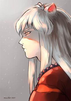 Inuyasha by Nana-Bid