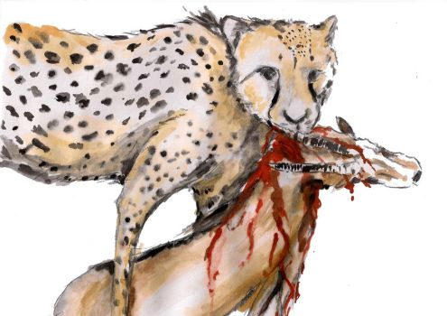Cheetah and the Diet by Vadlicious