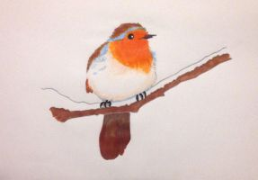 Red robin on a snowy branch by LemonSquash