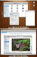 Wildcat Gtk Theme 1.3 by Dolsilwa