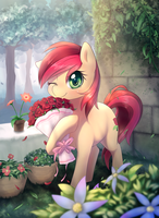 Spring by aymint