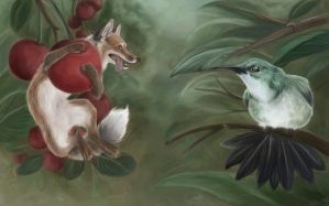 Of foxes and hummingbirds by daisy7