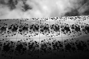 Building flowers II by Pierre-Lagarde